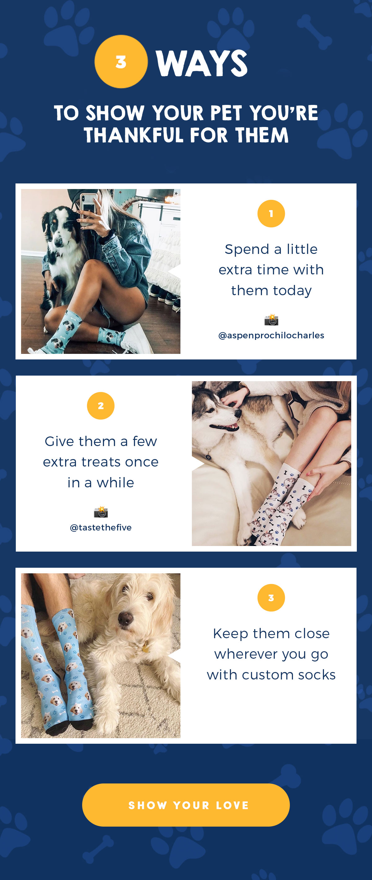 3 ways to show your pet you're thankful for them | SHOW YOUR LOVE