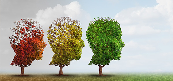 Can Omega-3 DHA Help Avoid or Ease Alzheimer's?