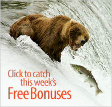 Click to catch this week's - Free Bonuses